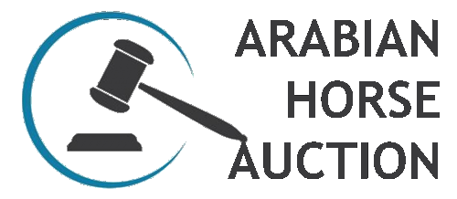 ARABIAN HORSE AUCTION